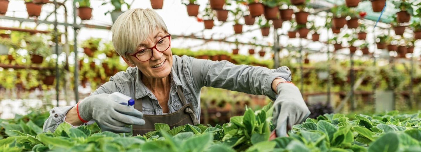 A Retirement Income Roadmap for Women